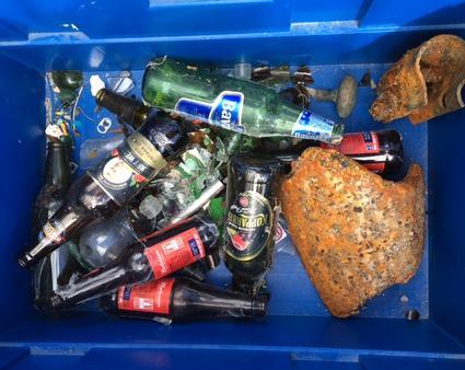 Living Coasts/Paignton Zoo – Trash or Treasure?